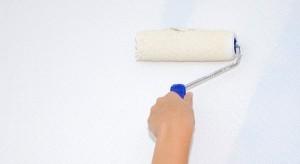 La selladora se aplica en la pared al igual que la pintura, con rodillo o brocha. Su función es la fijación de la zona dañada